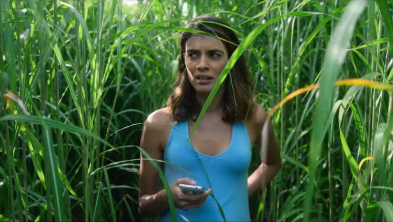 In The Tall Grass (En La Hierba Alta)
